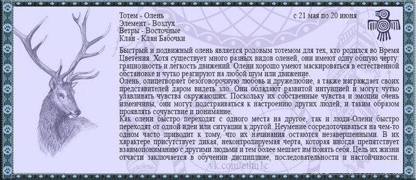 характеристика по таро дата рождения 25 мая 1980 идеале